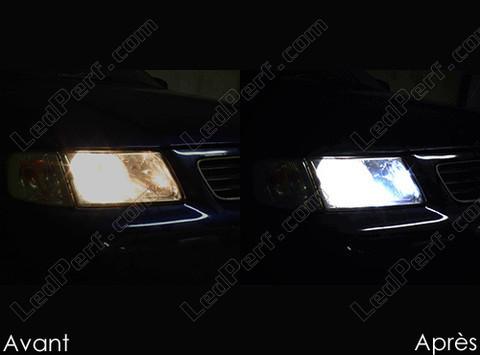 pack ampoules de feux phares xenon effect pour audi a3 8l. Black Bedroom Furniture Sets. Home Design Ideas