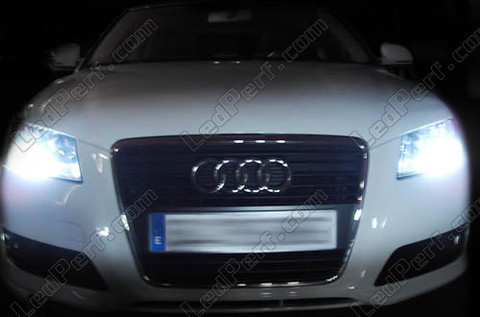 pack leds feux de jour diurnes pour audi a3 8p facelift drl. Black Bedroom Furniture Sets. Home Design Ideas