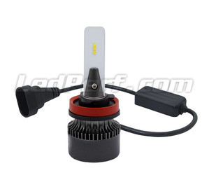 Ampoules H16 LED Eco Line branchement plug and play et Canbus anti-erreur