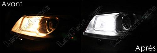 [Reduction] LedPerf.com : Eclairage Auto à Leds Eclairage_Veilleuse_Blanc_xenon_luxe_Renault_Megane_2_xenon_led_tuning_2