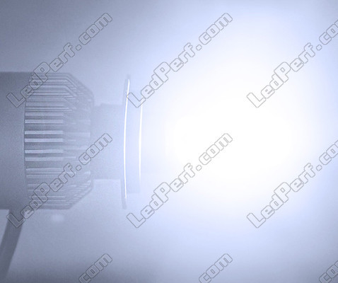 Kit LED COB All In One Can-Am Outlander Max 500 G1 (2007 - 2009)