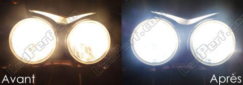 ampoule led speed triple