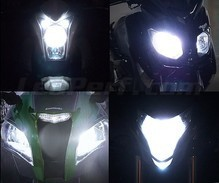 Pack ampoules de phares Xenon Effect pour Yamaha YFM 125 Grizzly