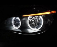 Pack angel eyes Leds BMW Serie 5 E60 E61 Ph 2 (LCI) - Sans xenon d'origine