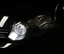 pack ampoules de feux phares xenon effect pour volkswagen. Black Bedroom Furniture Sets. Home Design Ideas